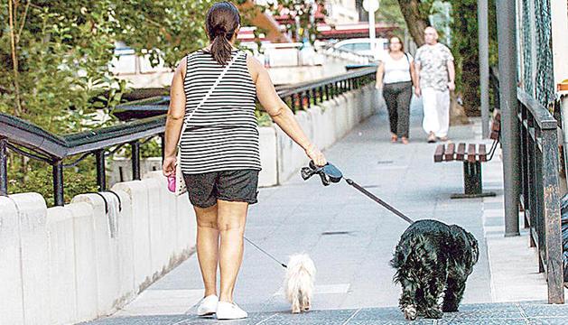 Una persona passejant dos gossos.