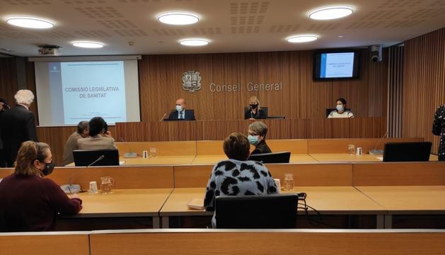 El ministre de Salut compareix en comissió al Consell