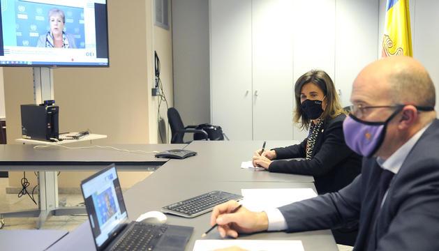 Vilarrubla i Campuzano, durant el Consell Directiu telemàtic d'aquesta tarda.