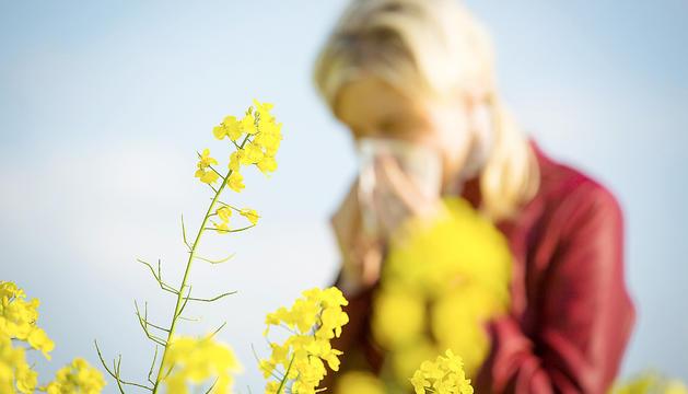L'al·lèrgia al pol·len no és exclusiva de la primavera