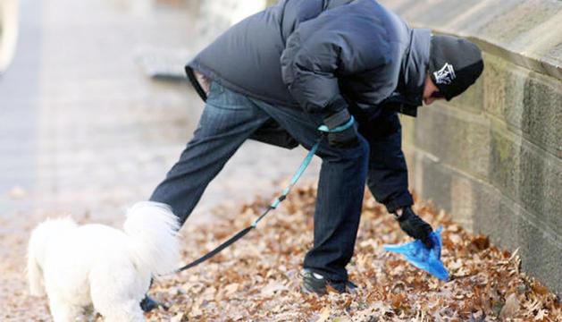 El propietari d'un gos recollint la tifa del carrer.