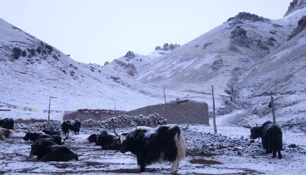 Part de la Ruta de la Seda, al Tibet.