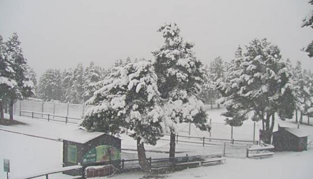 La nevada a Naturlandia.