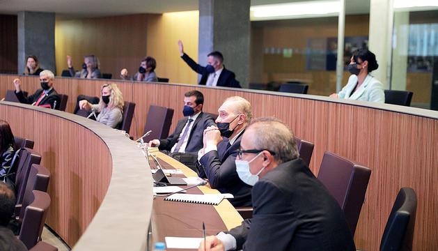 Els parlamentaris de terceravia al Consell General.