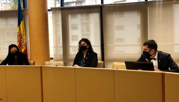 Sessió d'ahir del consell de comú de la Massana.