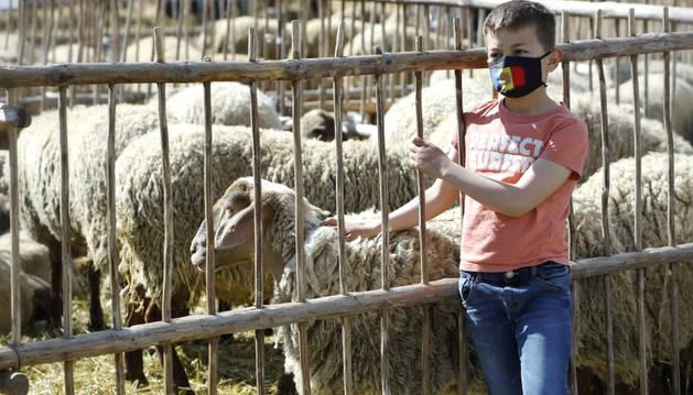 La llei òmnibus d'agricultura, per al setembre