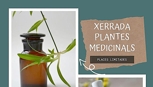 Xerrada sobre plantes medicinals