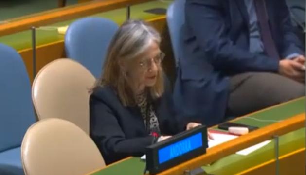 Elisenda Vives durant la seva intervenció a l'ONU