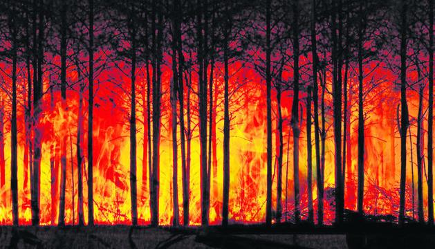 Aquest fenomen incrementa el risc d'incendi forestal