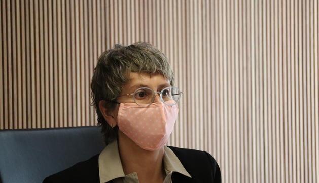Susanna Vela demana informació sobre els crèdits tous.
