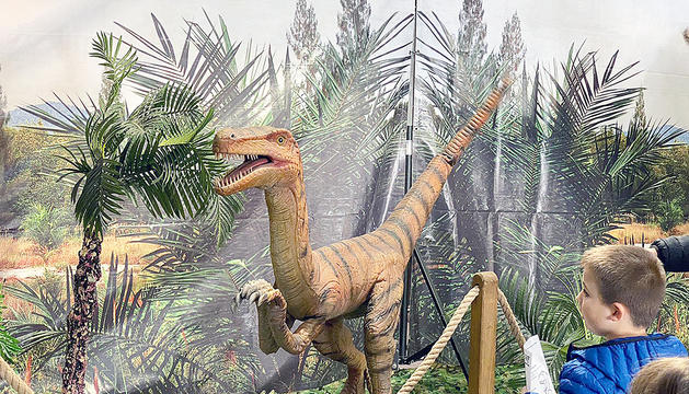 Un infant a l'exposició 'Dinosaurs Live'.